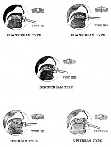 Reinhardt Types III and IV